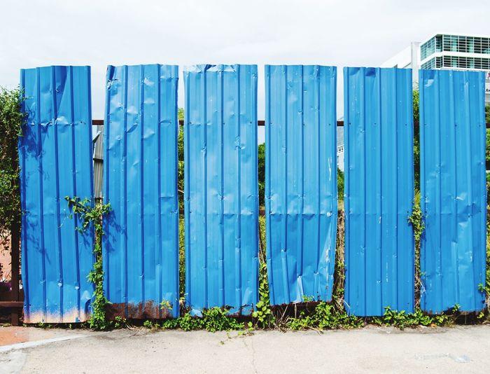 Corrugated Iron Surrounding Wall