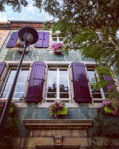 B&B 💕 Architecture Flower Window Low Angle View No People Building Exterior Plant Window Box Outdoors Landscape Built Structure Day Nature