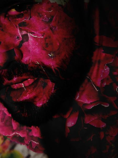 Rage Red Red Color Rage Rageface Angry Rebel Rebellion Shout Revolt Face Man Male Mouth Teeth Beard Eye Close-up Close Up Closeup Petals Strength Powerful Background Vision Imagination