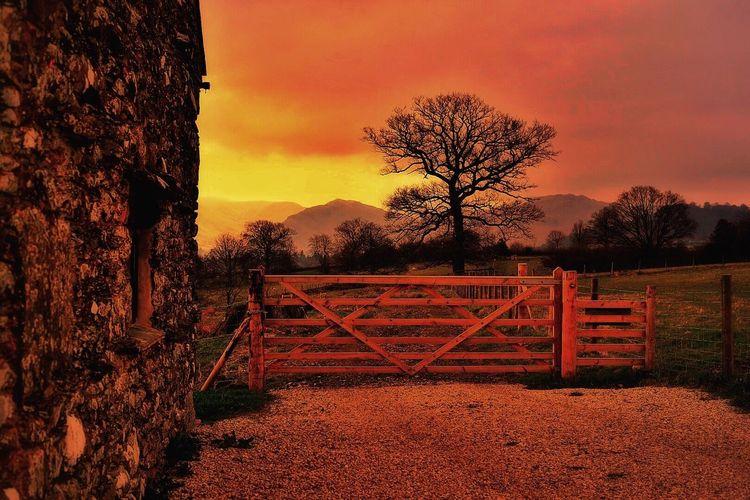 Sunset delight