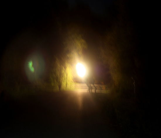 Illuminated Light And Dark Lonesome Nature Night Outdoors Photograpghy  Trees Way Ahead