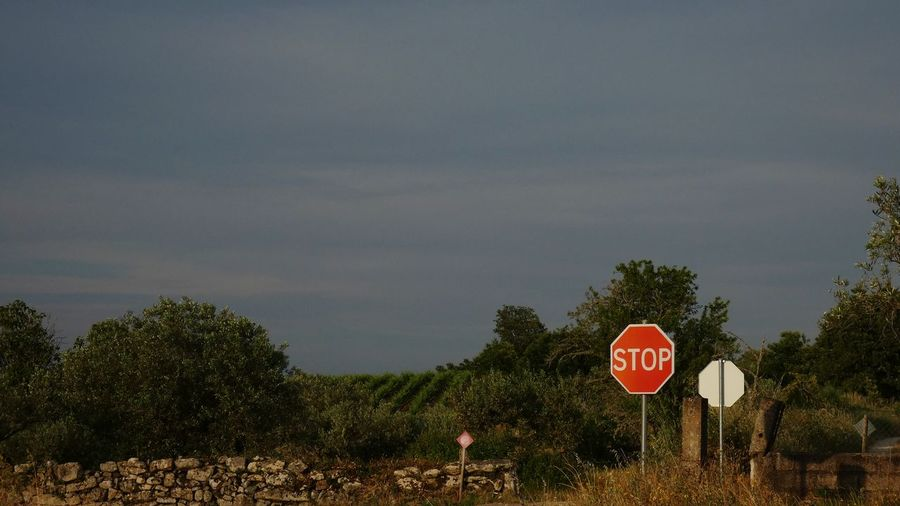 Road sign by trees against sky