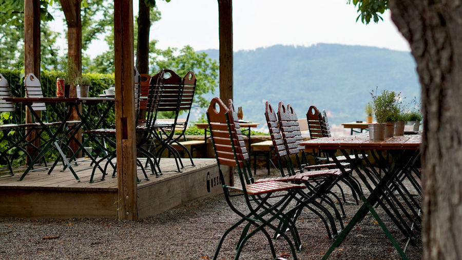 Empty chairs and table against plants in yard
