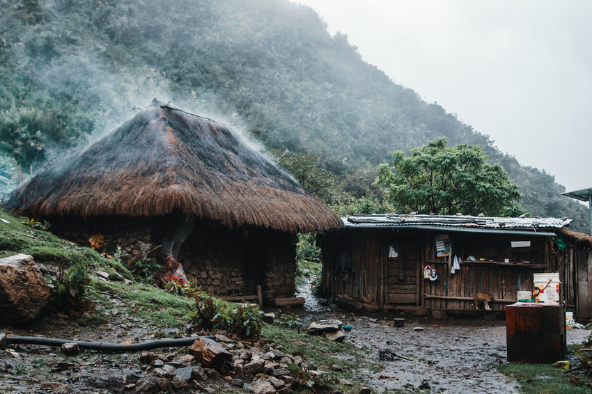 Sightings on the way to Machu Picchu. Latin America Machu Picchu Nature Smoke Tranquility Building Building Exterior Built Structure Cottage Day Fog House Hut Idyllic Jungle Landscape Mountain No People Non-urban Scene Outdoors Roof Salkantay South America Thatched Roof Tree