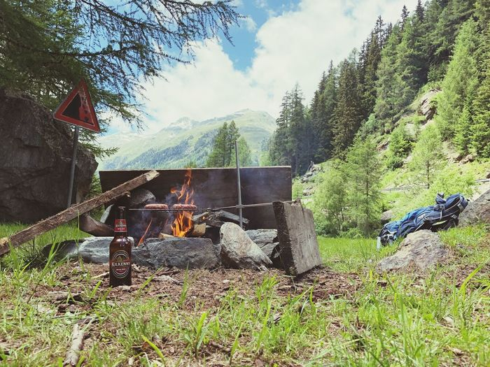 Bonfire Berge Fresh Food Wildlife & Nature Campinglife Camping Barbecue Plant Tree Nature Sky Day Land No People Burning