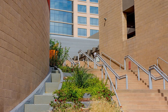 Contrasting Buildings Exploring Stairs Apartment Arch Architecture Building Exterior Built Structure City Day Downtown District Mixed Use Modern No People Outdoors Outside Photography Plant Staircase Steps Steps And Staircases Street Photography Urban Urban Art Walking Window
