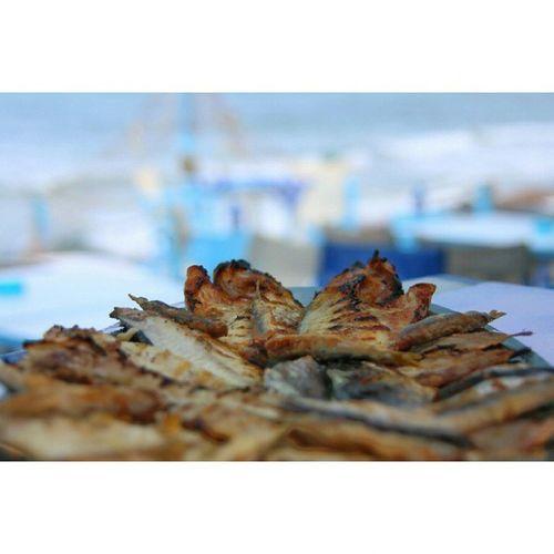 Scalamarion Thasos Thassos Greece Fish Fishes Flisvos Flisvos1974 Canon Canon6d