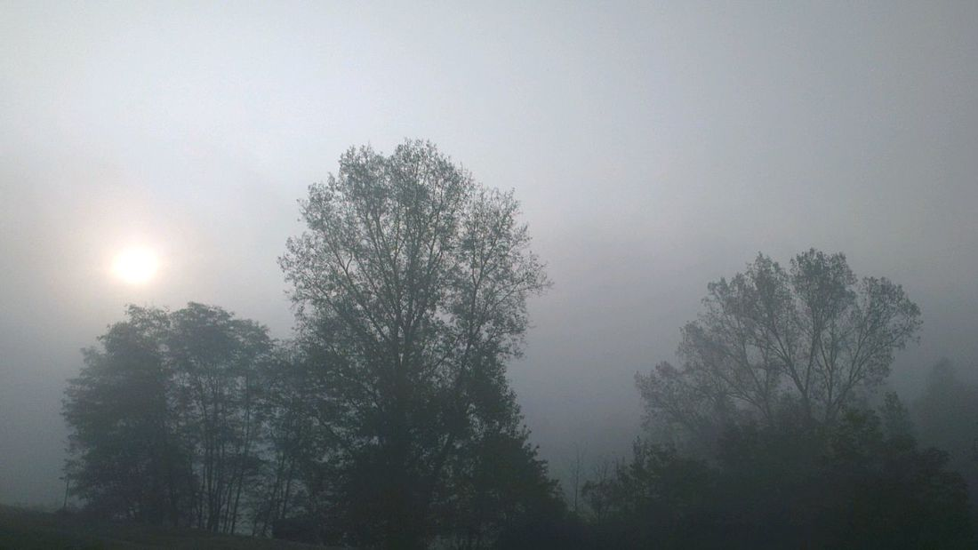 The fog... Landscape Italy On The Road Born To Be Wild