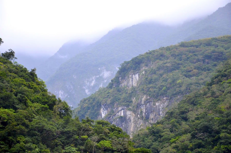 Beauty In Nature Clouds And Sky Fog Green Landscape Mountain Mountain Range Scenics Valley Taiwan Hualien, Taiwan