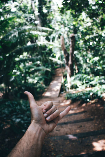 Shaka sign hand of man with tropical rainforest in the backgroud