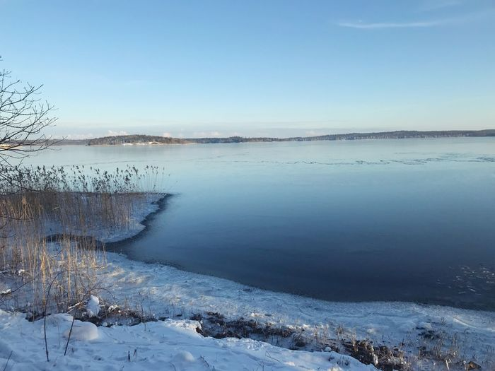 Frozen lakes Scandinavia Stockholm Sweden Nature Water Beauty In Nature Tranquil Scene Scenics Tranquility Cold Temperature No People Ice Day Outdoors Winter Snow Frozen Lake Sky Landscape Clear Sky Blue Tree Shades Of Winter
