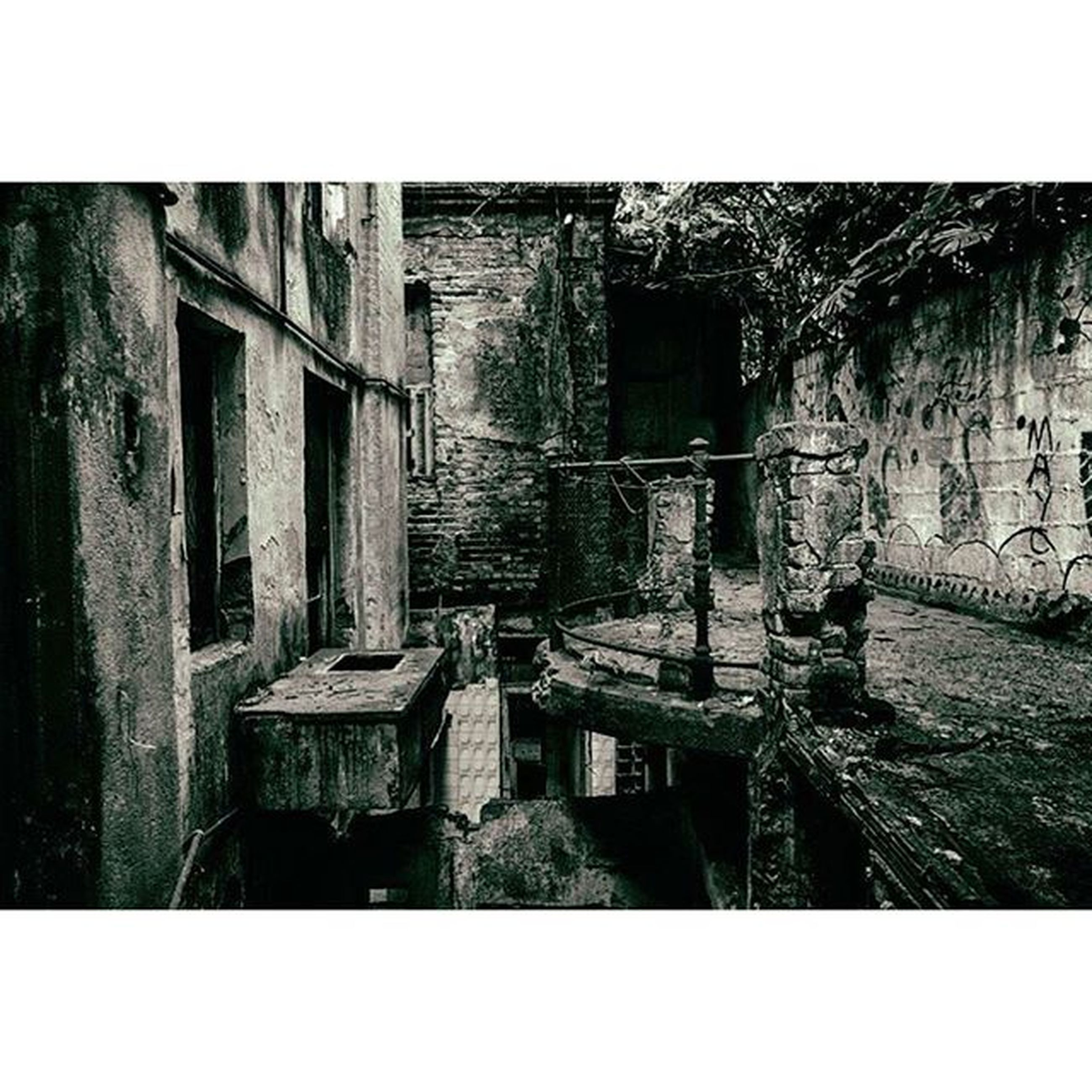 transfer print, auto post production filter, architecture, built structure, building exterior, abandoned, old, house, damaged, weathered, deterioration, run-down, obsolete, day, outdoors, no people, wall - building feature, wall, window, tree