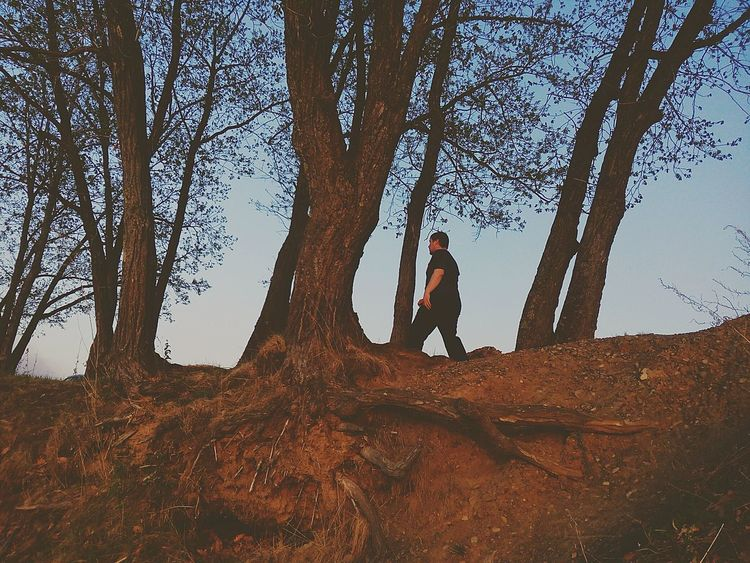 Where Are You Now? Tree One Person Adults Only People One Man Only Adventure Adult Nature Hiking Only Men Tree Trunk Day Outdoors Full Length Sky Beauty In Nature The Great Outdoors - 2017 EyeEm Awards The Portraitist - 2017 EyeEm Awards Done That.