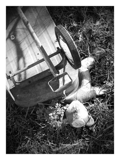 Abandoned Accident Accidents And Disasters Blackandwhite Close-up Crushed Day Field Flexible . Flyer Grass Grownup High Angle View Killed Nature News No People Outdoors Poor  Sad Saftey Teddy Bear Wagon  Wheel