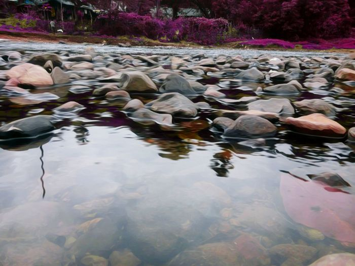 Nature Water Rock - Object Reflection Tranquil Scene Tranquility Waterfront Stone - Object Scenics Non-urban Scene Travel Destinations Nature Tourism Beauty In Nature Remote Water Lily Day Garden Water Surface Vacations Solitude