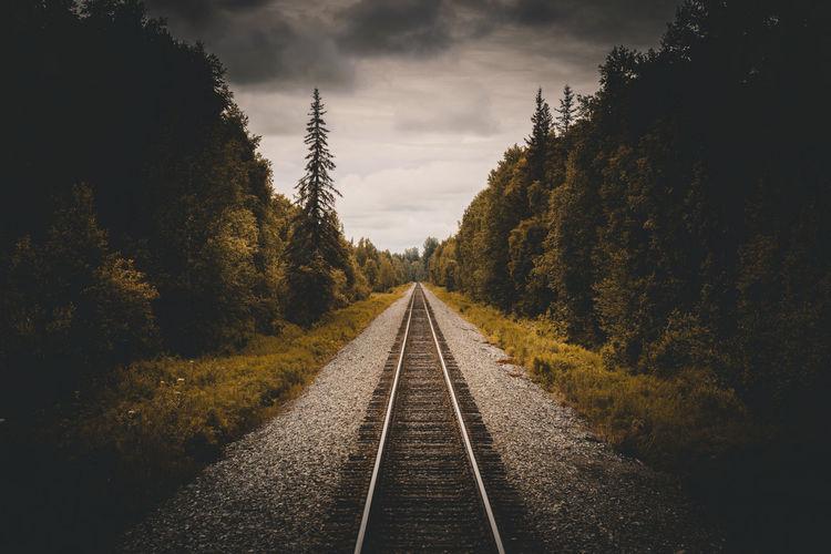 Railroad to denali national park, alaska