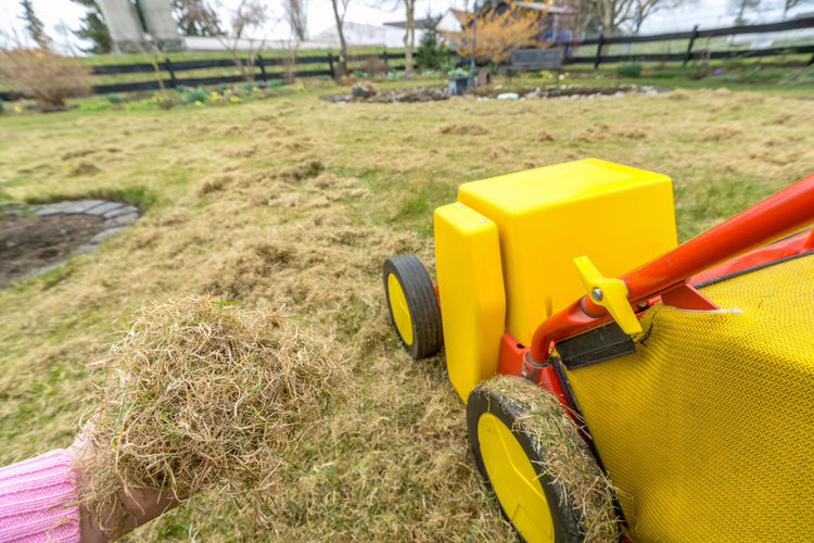 Scarifier, Garden Work Aerator Gardening Grass Grazing Green Machinery Work Agronomy Agronomy Garden Hobby Lawn Lawnmower Outdoors Scarifier Soil Spring Technology