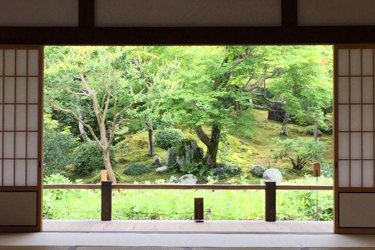 あおば Temple お寺 Japan Kyoto,japan お庭 静寂 Silent Silent Moment 静寂の空間にただ緑の庭に風が淀む