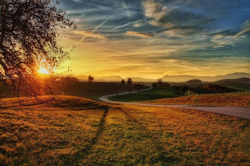 Good night, dear friends! Tomorrow is a new day, it's your day!... Daily Impressions Sunset Nature Sky Field Tranquility Beauty In Nature Outdoors Scenics Tranquil Scene Grass Tree Landscape Vienna Alps Austria Idyllic A Photo Like A Painting Melancholic Landscapes Capture The Moment