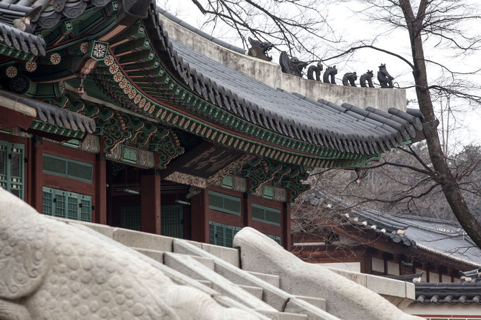 Architecture Art Art And Craft Bare Tree Building Exterior Built Structure City Day Gyungbok Palace Historic Building Historic Place Korean Traditional Architecture No People Outdoors Palace Place Of Worship Religion Roof Sculpture Sky Spirituality Statue Temple - Building Travel Destinations Tree