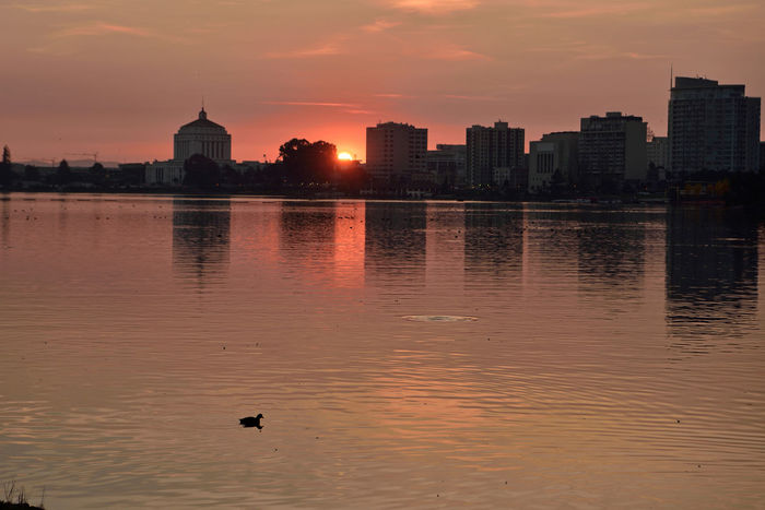 Sunset At Lake Merritt 3 Lake Merritt Oakland, CA Sunset _collection Sunset Silhouettes Sundown Sunset _Lovers Sun's Glow Superior Court House Reflections Reflected Glory Reflections In The Water Urban Photography Waterfowl Office Buildings Construction Cranes Sun Over The Horizon Golden Hour