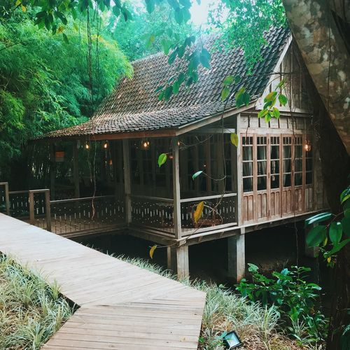 Our little teak house hideaway EyeEm Best Shots Hotelroom Vintage Cars Wood Wood - Material Jungle Teak House Built Structure Architecture Building Exterior Tree Plant Day Growth No People Nature Outdoors Roof Green Color Sky