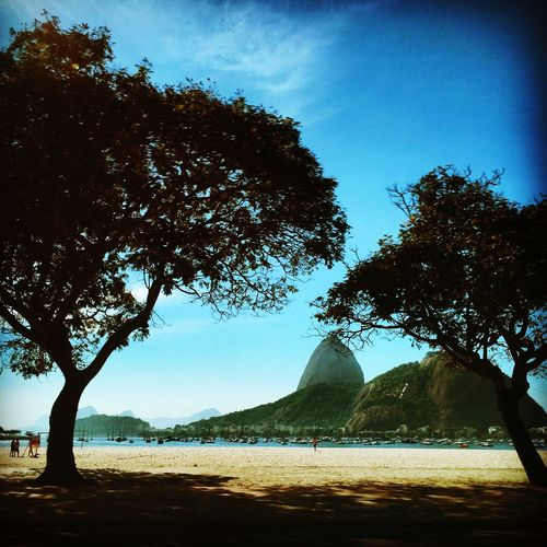 The Great Outdoors - 2016 EyeEm Awards Sugarloaf Rio De Janeiro