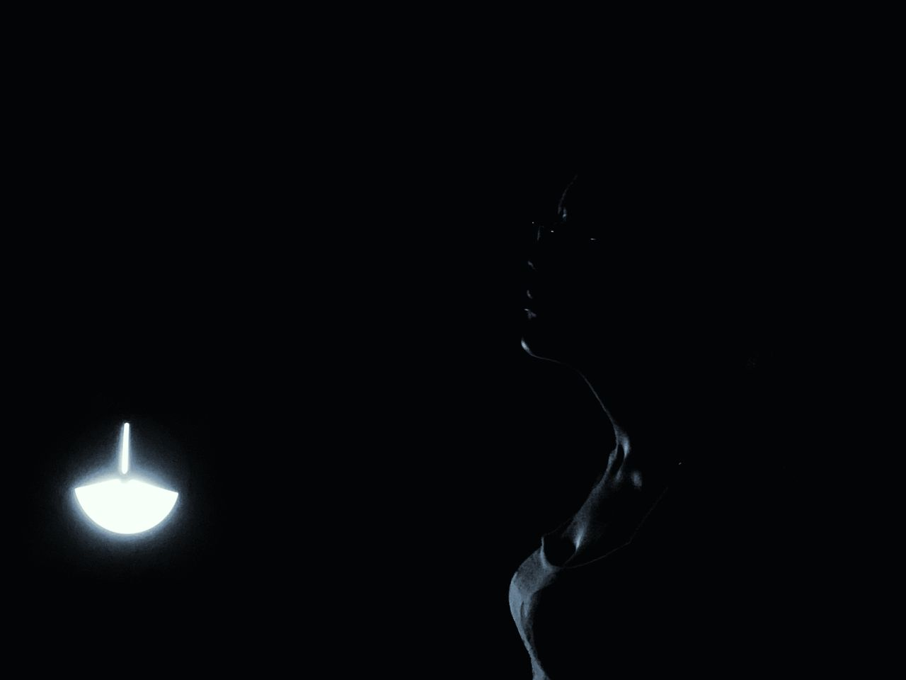 black background, illuminated, studio shot, copy space, dark, indoors, no people, lighting equipment, close-up, night, glowing, nature, silhouette, side view, light - natural phenomenon, black color, light, darkroom, motion, smoke - physical structure, electric lamp, moonlight