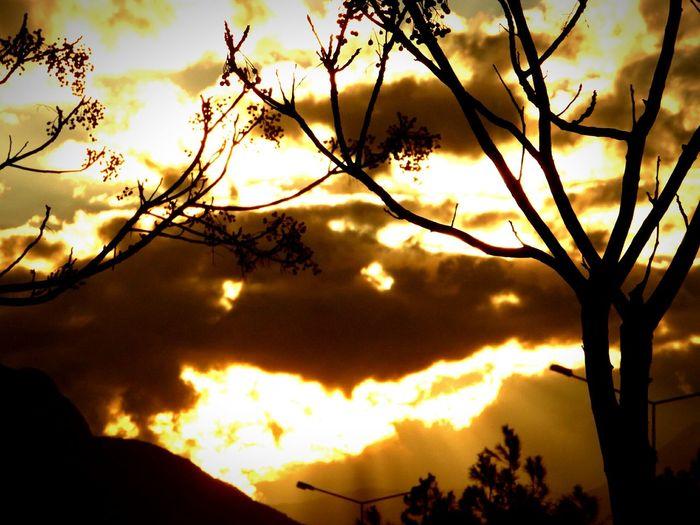 Siluetphoto Siluetphoto Sileuet Silueta Vespertina #esquidemontaña #skimountaineering #skimo #training #gasss #sunset #atardecer #afterwork #mountain #ilovemountain #dynafit #spring #primavera Cotos Peñalara [ Eyemphotography Samsung Smart Camera View Samsung Antalyaturkey Samsungphotography Samsung Galaxy Camera Sunset #sun #clouds #skylovers #sky #nature #beautifulinnature #naturalbeauty #photography #landscape