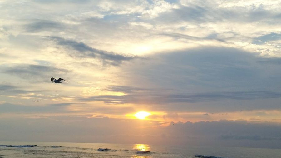 Eyeemphoto Sunlight Eyeem US Beach Sunrise Sunrise Collection Myrtle Beach SC Ocean Sunrise Beautiful Waves Crashing Waves Breaking On A Shore Vacation Beach