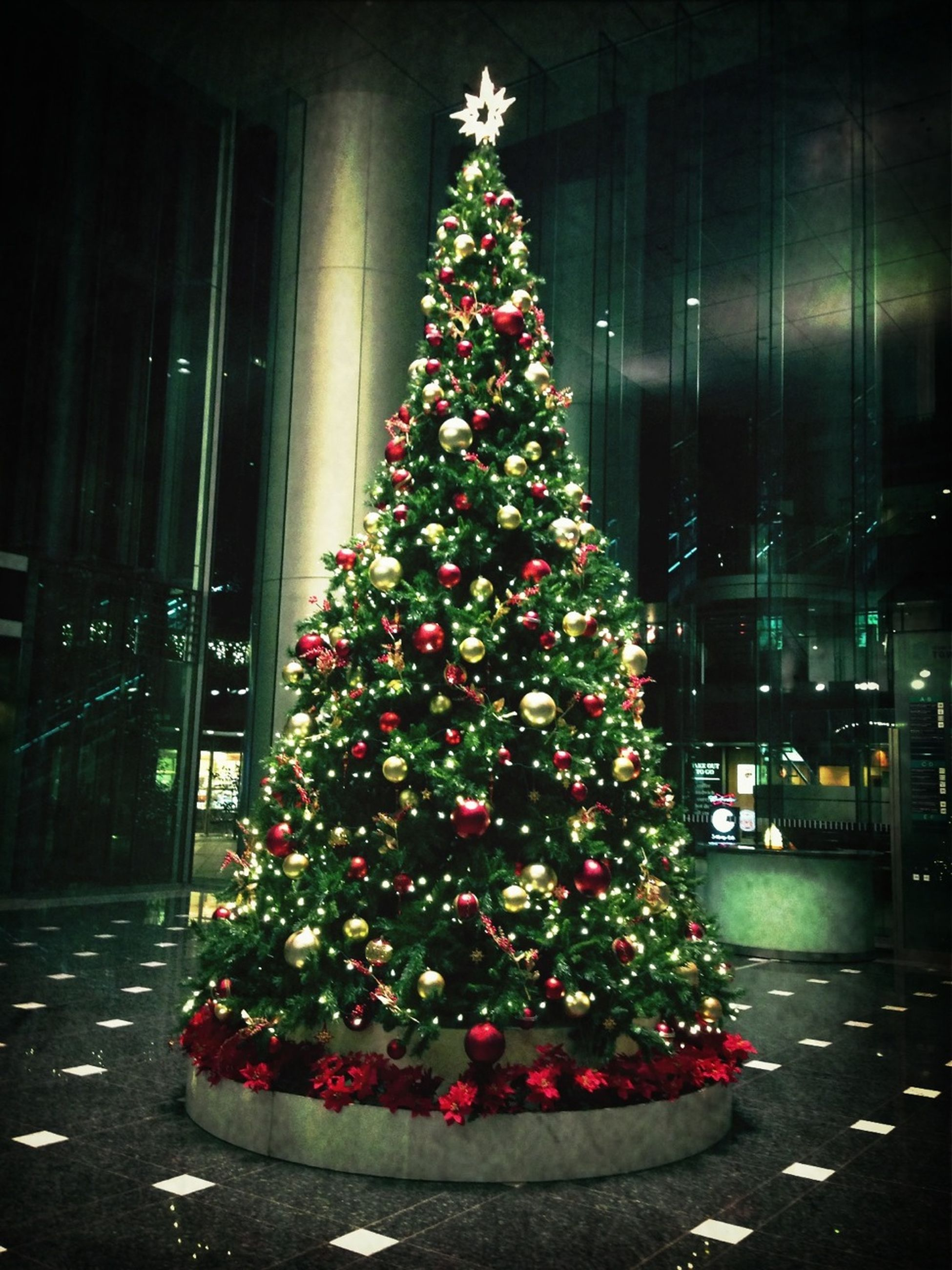 flower, decoration, illuminated, freshness, red, celebration, christmas, christmas decoration, built structure, christmas tree, architecture, night, potted plant, fragility, indoors, building exterior, pink color, multi colored, growth, plant