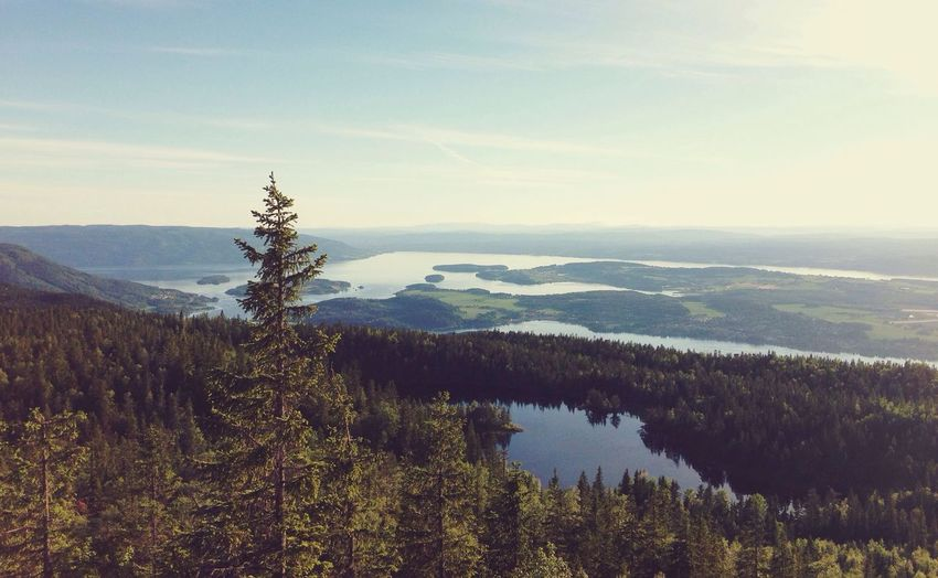 "The view from Gyrihaugen in Nordmarka (translates to ""North forest""). Oslo Enjoying The View Fjord Forest First Eyeem Photo"