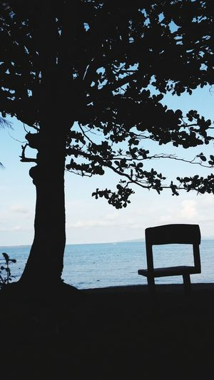 What if Trees refused to Let Go of their Leaves ? Letting Go means Letting Grow Summer Seaview From A Distance Poetry Of Earth Outdoors Sky And Clouds EyeemPhilippines From My Point Of View Simplicity Life Black Travel Scenics Nature Makes Me Smile Growth Creations  Chair Empty Waiting Silhouette