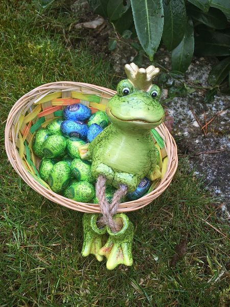 Warten auf den Osterhasen ...🐰🐸🙈😅 Easter Time In The Eyeem! Easter Ready Sweet Food Easter Eggs Frog Frogprince Frogs,chilling Spring Flowers