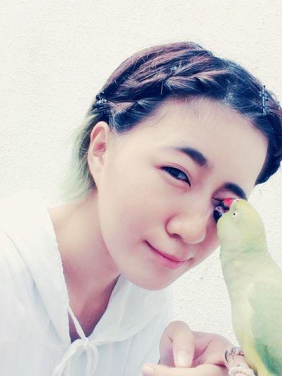 Birds Pets Birds Of EyeEm