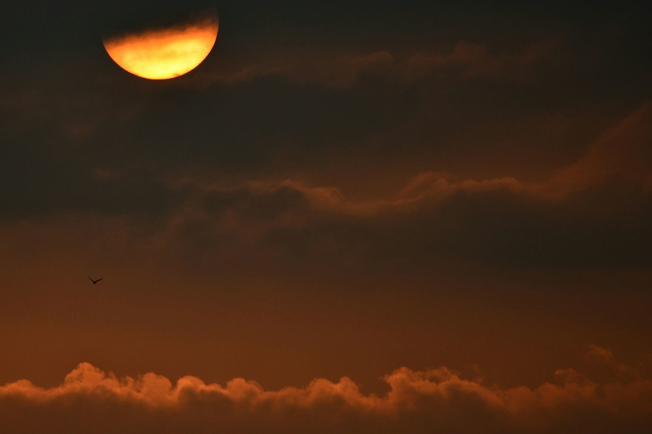 sunset, sky, beauty in nature, cloud - sky, nature, scenics, orange color, flying, outdoors, tranquil scene, silhouette, moon, low angle view, no people, tranquility, sun, sky only, bird, mid-air, animal themes, animals in the wild, day
