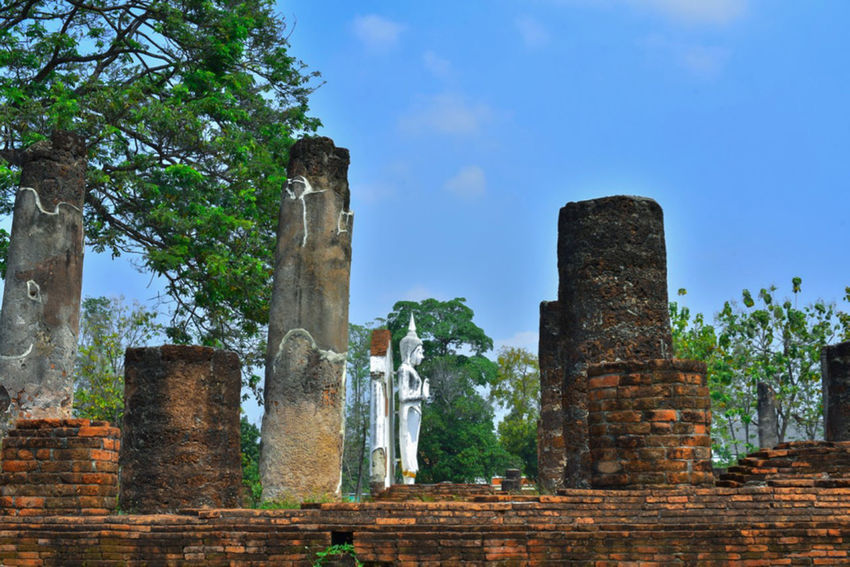 EyeEm Nature Lover EyeEm Best Shots Archaeology Architectural Column Ruined Building Outdoors Tree Religion Damaged Nature Travel Destinations Ancient Civilization Place Of Worship Building Exterior Day Old Ruin No People Ancient The Past Built Structure History Architecture Thaland Phitsanulok