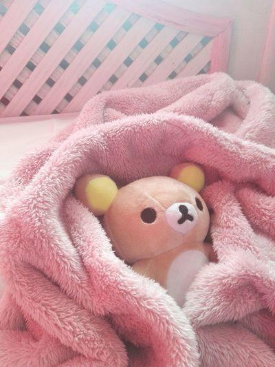 Realmente no sé que me pasa pero tengo mucho sueño, me quedo dormida a ratitos y no me doy ni cuenta. Lo peor es que aunque duerma bien aún así me siento muy cansada y somnolienta :c Rilakkuma Babybear Pink Mybed Socute💕 Cuteness Love ♥ Sweet IloveIT ♡ Imsosad Doll Toy