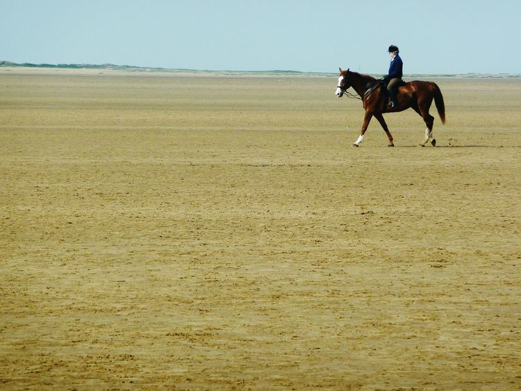 One Animal Horse Riding Animal Animal Themes Sand Domestic Animals Outdoors Nature Mammal Agriculture People Sports Race Day Sky Sand Dune Adult Sports Track Photography Liverpool, England Beauty In Nature Equestrian Country Life