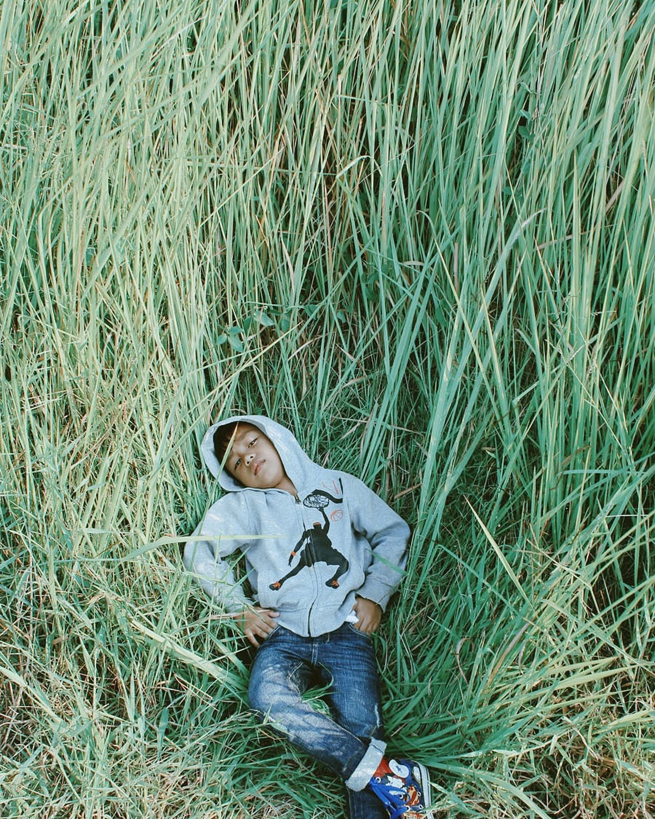 grass, high angle view, one person, field, day