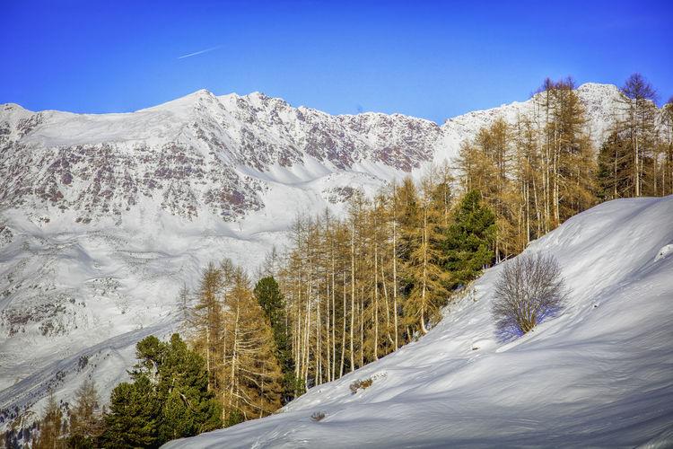 Austria Best EyeEm Shot Obergurgl Beauty In Nature Cold Temperature Landscape Mountain Nature No People Oroszphotography Outdoors Scenics Snow Tree Week On Eyeem Winter ötztal