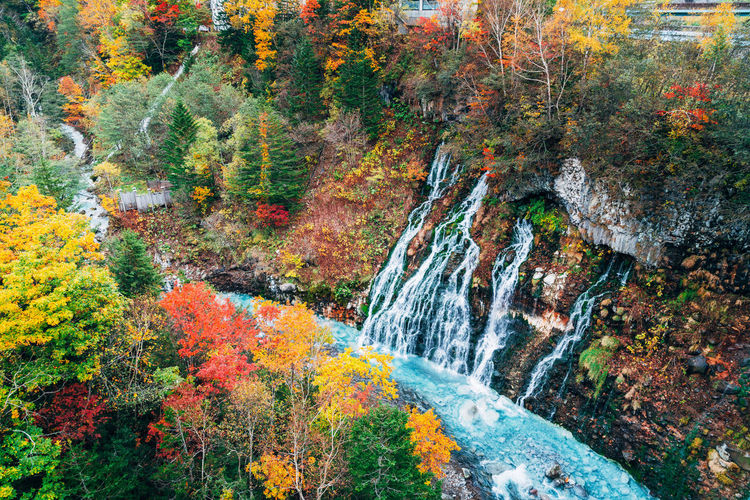 Autumn Water Scenics - Nature Beauty In Nature Tree Forest No People Nature Land Plant Environment Change Multi Colored Day Motion Non-urban Scene Flowing Water Waterfall Outdoors Flowing WoodLand Stream - Flowing Water Rainforest Power In Nature