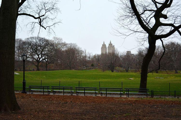 Upper East Side Upper East Side Manhattan  Central Park