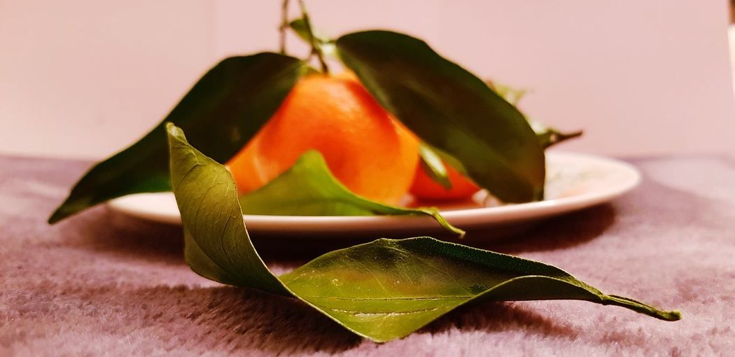 Close-up of leaves and orange on textile