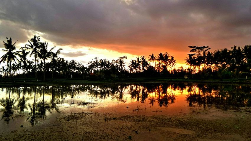 Bali Bali Sunset Ubud Tengkulak Jeanmart Bali 16:9 Verybalitrip Very Bali Trip