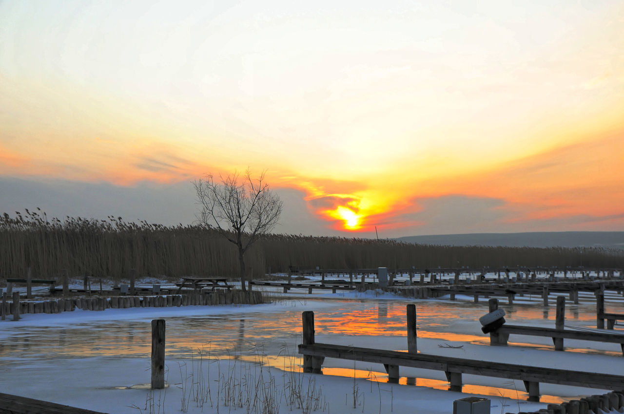 cold temperature, winter, snow, sunset, nature, weather, beauty in nature, scenics, frozen, tranquility, orange color, cold, tranquil scene, sky, bare tree, outdoors, no people, ice, landscape, tree, water, day