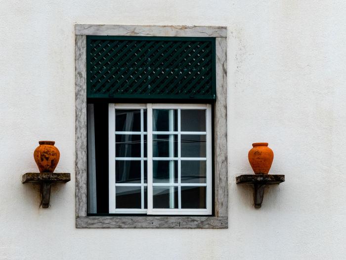 View of orange cat on window of building