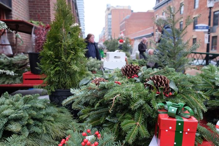 Holiday shopping Street Vendor Christmas Decoration Plant Architecture Christmas Tree christmas tree Nature Day Celebration Winter Decoration Green Color