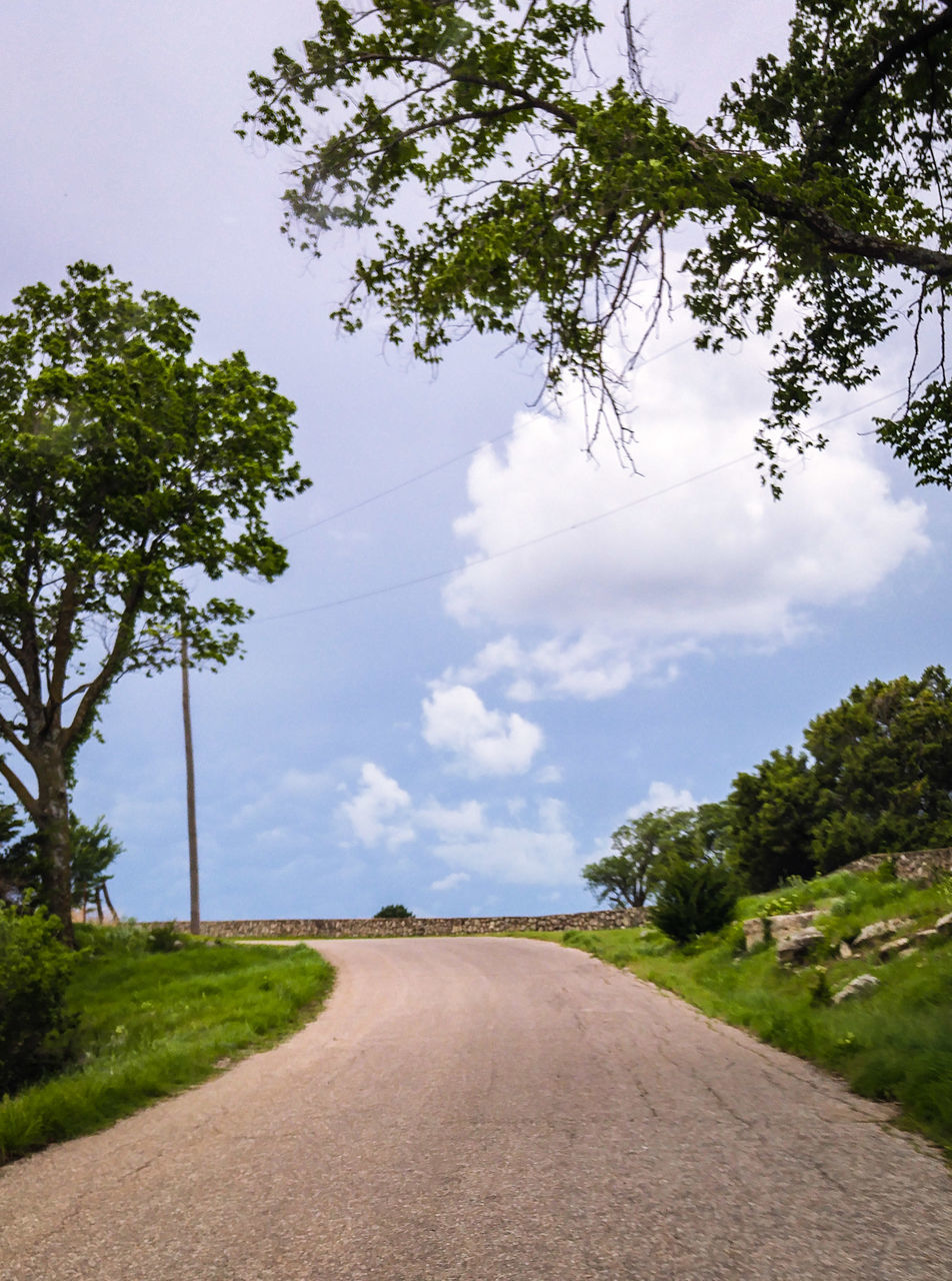 tree, road, the way forward, sky, nature, day, cloud - sky, landscape, outdoors, growth, no people, transportation, scenics, grass, green color, beauty in nature, tranquility