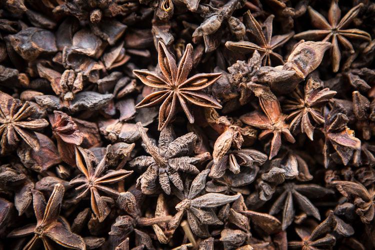 Full frame shot of star anise
